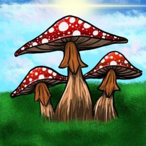 """Mushrooms Marioo!"" Poster"