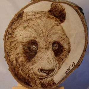 Panda Bear on Birch Wood Slice / Handmade pyrography Art / Woodburning Art