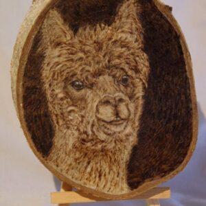 Lama on Birch Wood Slice / Handmade pyrography Art / Woodburning Art