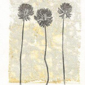 3 Clover Art Print