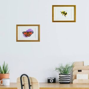 Bee and butterfly pastel paintings by Alan Taylor Art