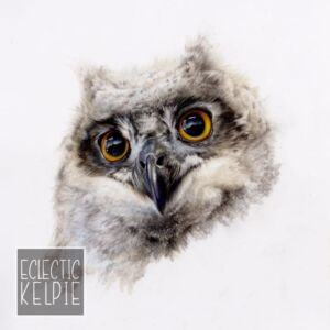 Baby Owl - Fine Art Print - Open Edition