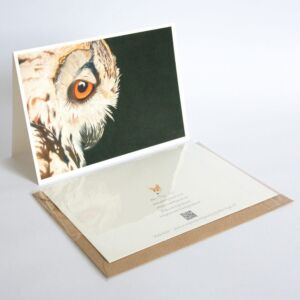 Owl fine art greetings card by Alan Taylor Art