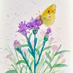 Clouded Yellow Butterfly original watercolour by Lisa Mann