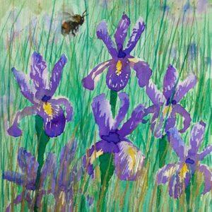 Bee and Purple Irises original watercolour by Lisa Mann