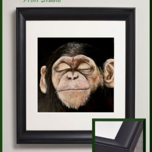 Cheeky Chimpanzee framed art print