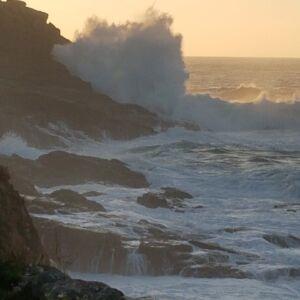 Sea Swell