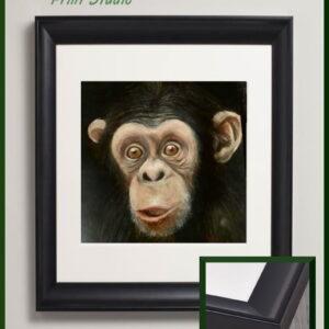 Wow chimp chimpanzee framed fine art print
