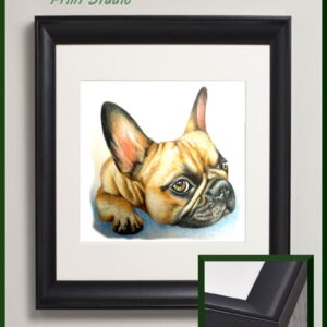 French bulldog fine art print - framed and mounted