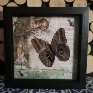 Alice in Wonderland Themed Butterfly Frame