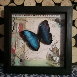 Alice in Wonderland Themed Butterfly Frame