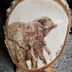 Elephant on Birch Wood Slice / Handmade Pyrography / Woodburning Art / Birch