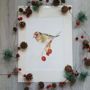 Goldfinch giclee print by Alan Taylor Art