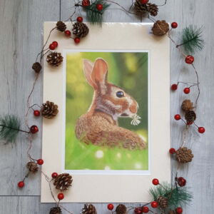 Rabbit giclee print by Alan Taylor Art